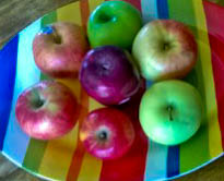 Apples for Fall Montessori Inspired Activities